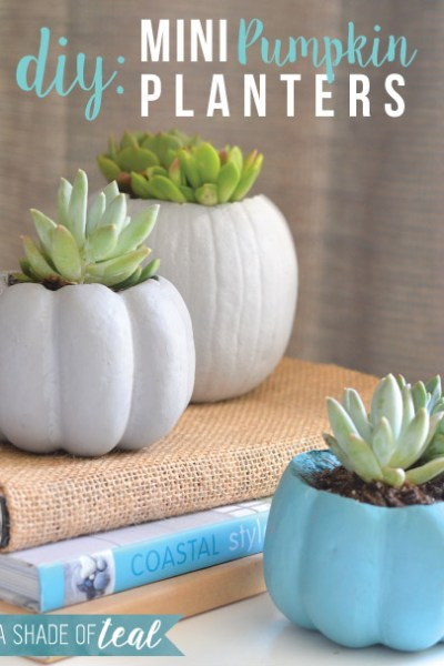 DIY Mini Pumpkin Planters