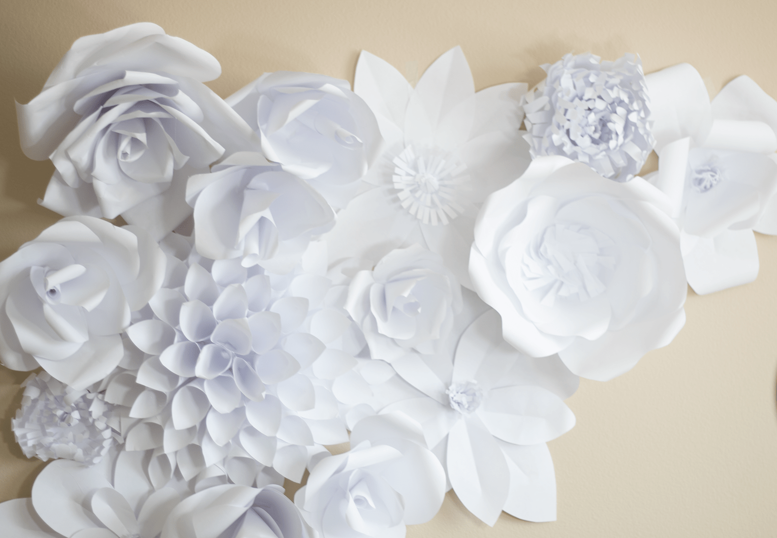 Large Paper Flower Tutorial