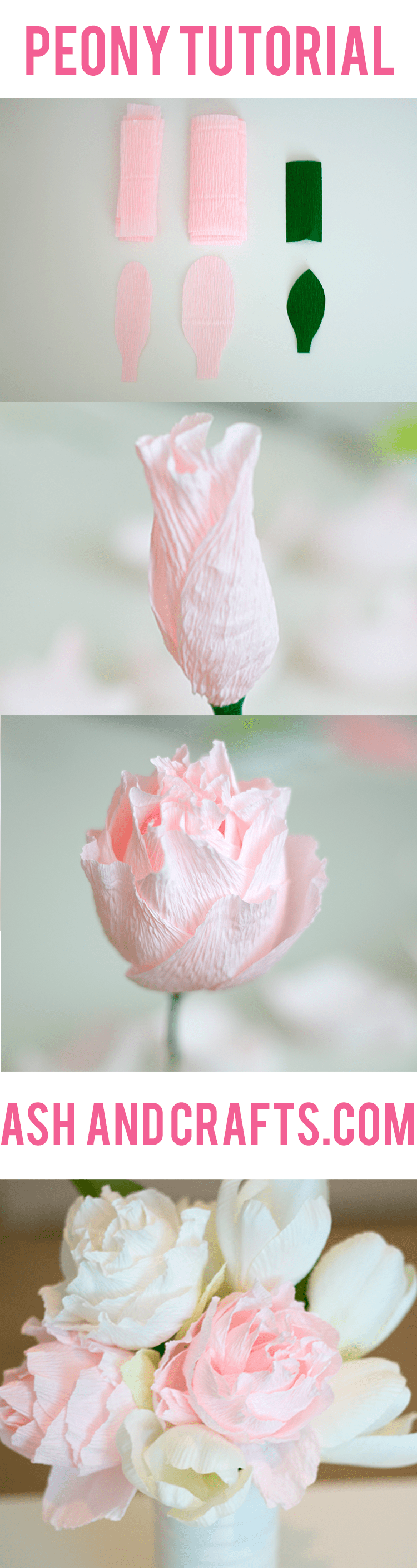 Paper Peony Tutorial Ash And Crafts