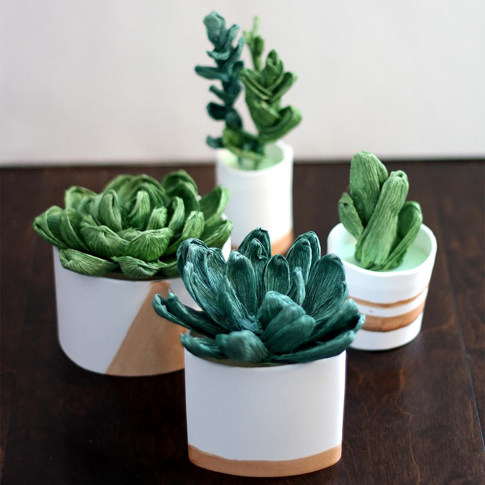 Crepe Paper Succulents