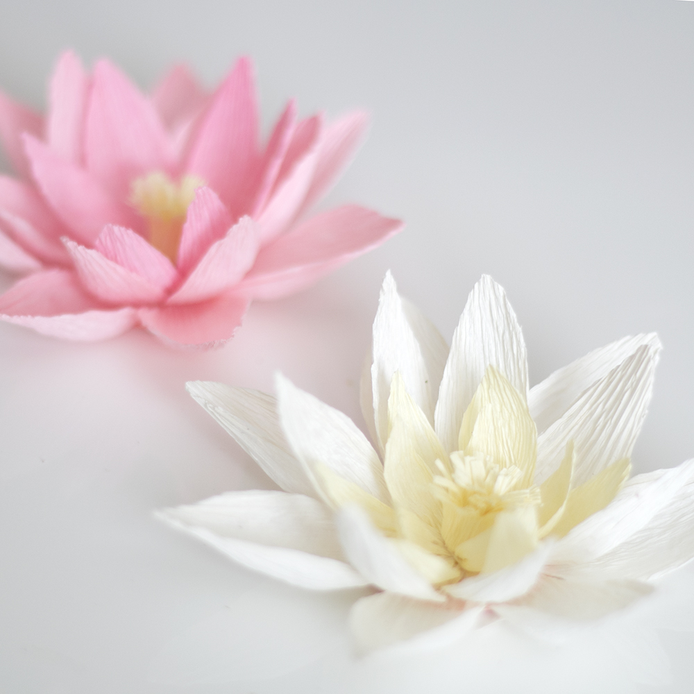 Crepe Paper Water Lily Ash And Crafts