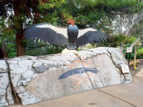 San Diego Safari Park, USA