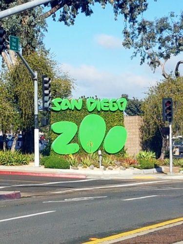 San Diego Zoo USA 5 375x500 - San Diego Zoo in 360º