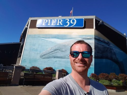 Pier 39 1 500x375 - Alcatraz Island in 360º