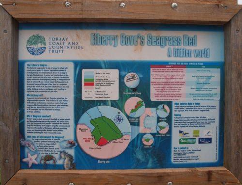 Elberry Cove, Paignton Brixham