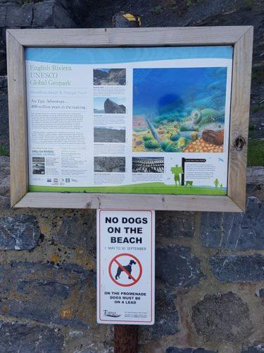 Meadfoot Beach, Torquay,
