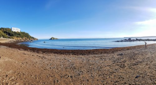 Meadfoot Beach, Torquay,
