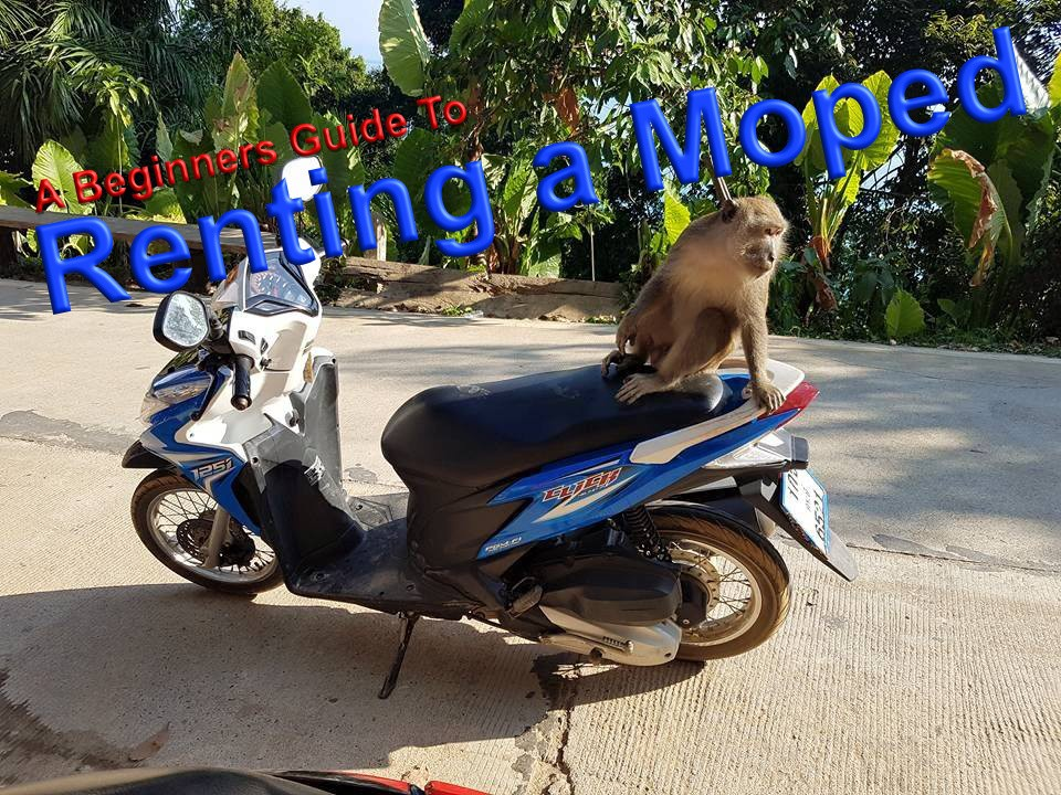 Renting a Moped in Thailand