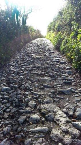 Cobble Stone Path Mansands
