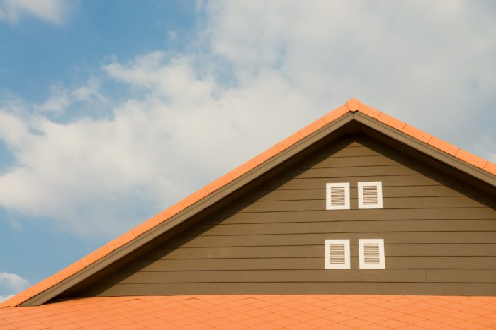 Types of Roofs to Consider for Your Home Renovation