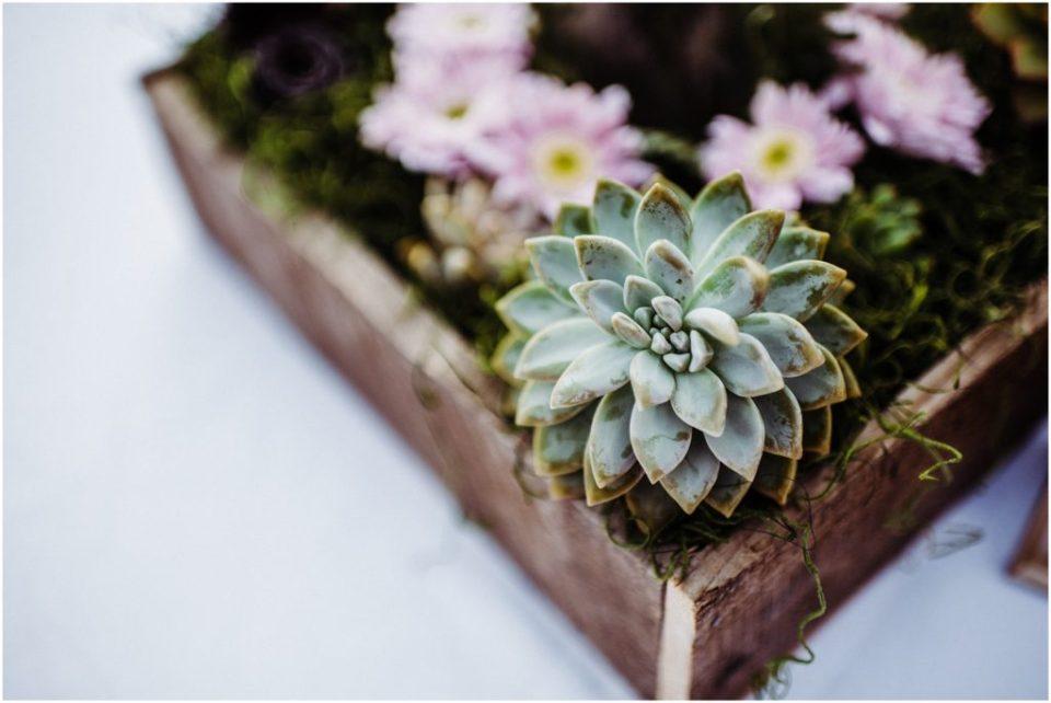 succulent center pieces for wedding reception