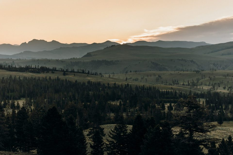 sunrise in yellowstone national park