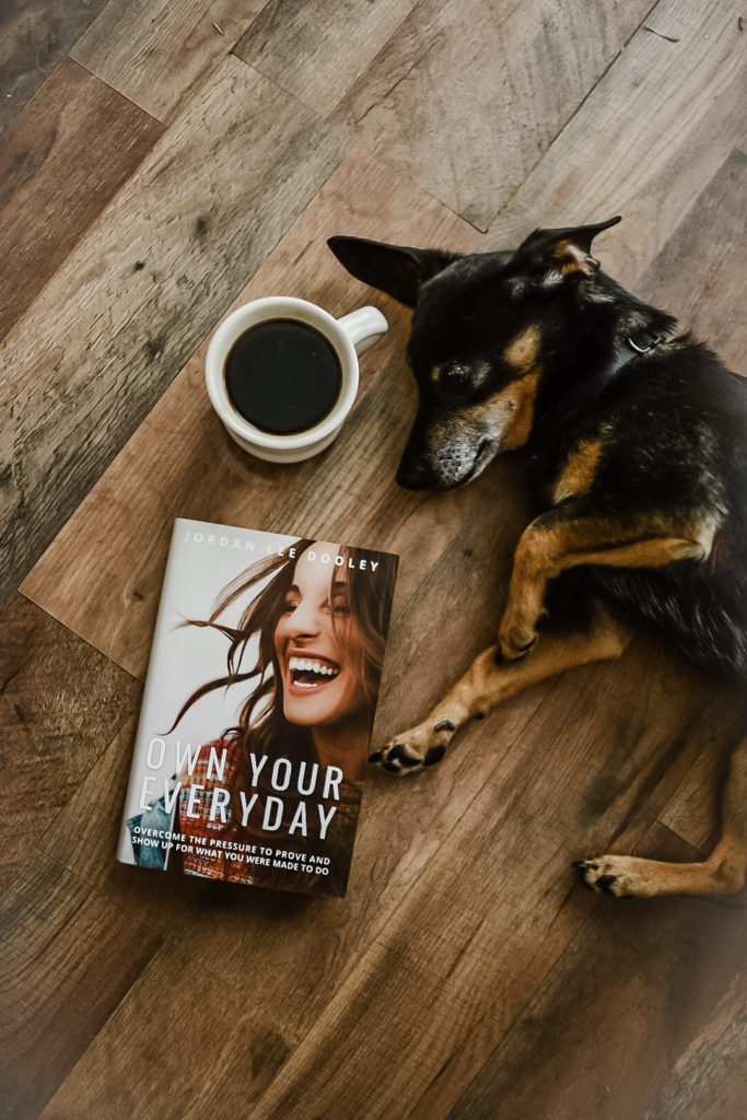 review of own your everyday by jordan lee dooley