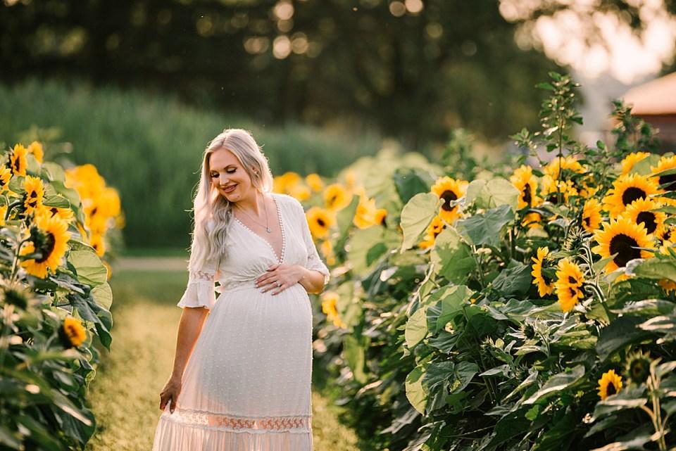 pregnancy photos in sunflower fields