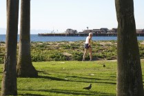 IMG_0805__cropped-then_1600-1067