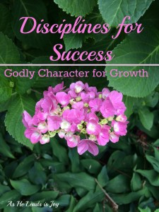 Diligence Disciplines for Success Godly Character for Growth