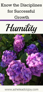 Know the Disciplines for Successful Growth Humility