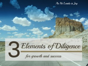 Elements of Diligence