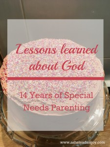 14 Years Special Needs Parenting