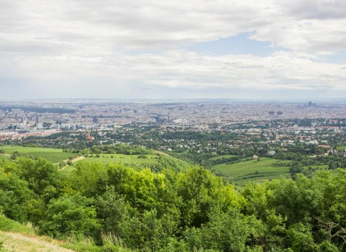 Views over Vienna