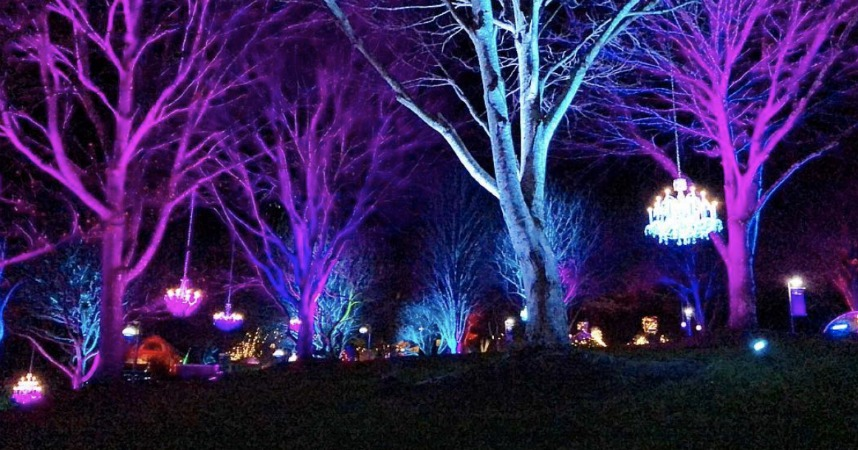 free holiday events in asheville