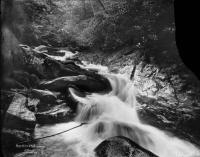 Headwaters of the Swannanoa. Nace Brock. D. H. Ramsey Library, UNCA.