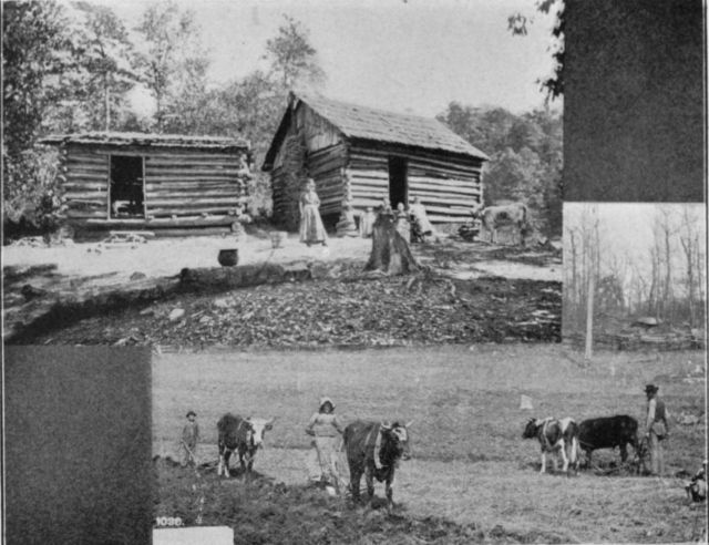 A Mountain Home, from Greetings from the Mountains and Valleys of Western North Carolina (1905). North Carolina Collection, UNC Library.