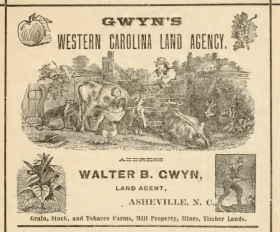 Asheville City Directory, 1883