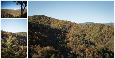 View Of Cataloochee Valley.
