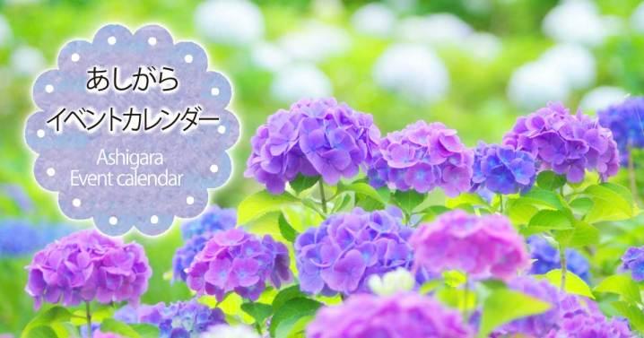 足柄イベントカレンダー2017夏