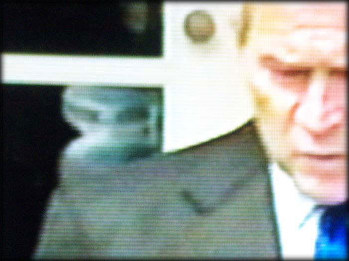 https://i2.wp.com/ashineko.up.seesaa.net/image/Bush_alien090607b.jpg
