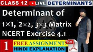 4. Determinants 1
