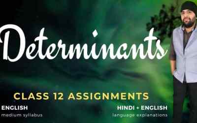 Ch04. Determinants Class 12 Assignments – 90D