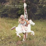 Diy Carousel Horse Centralia Il And Southern Il Photographer Ashlee Wethington Photography Ashlee Wethington Photography