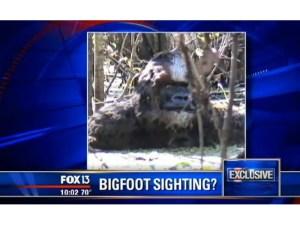 Bathing Bigfoot