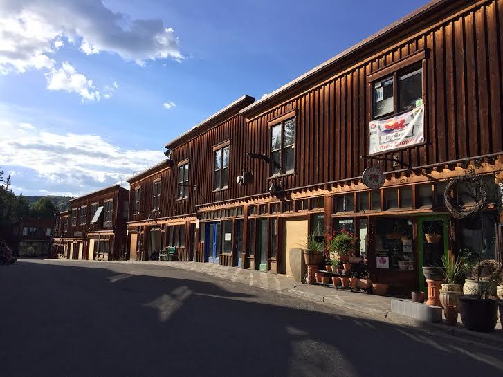 Telluride_town