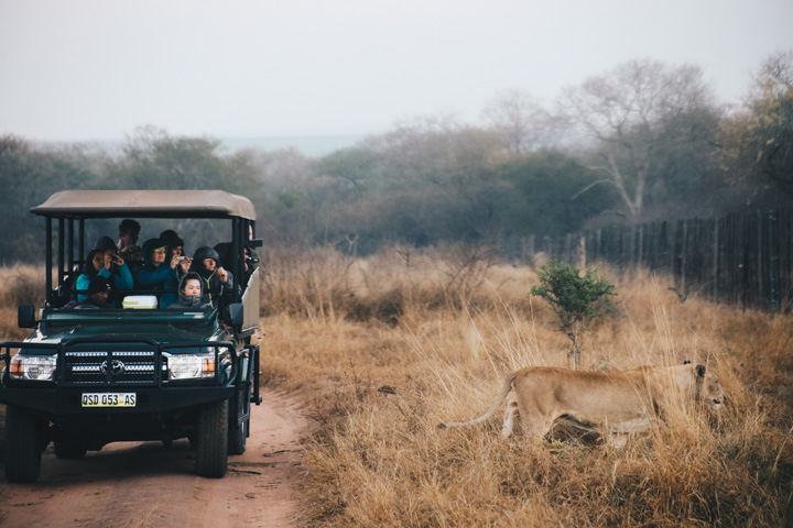 An honest review of overland travel in South Africa