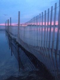 Barnegat Bay at sunset