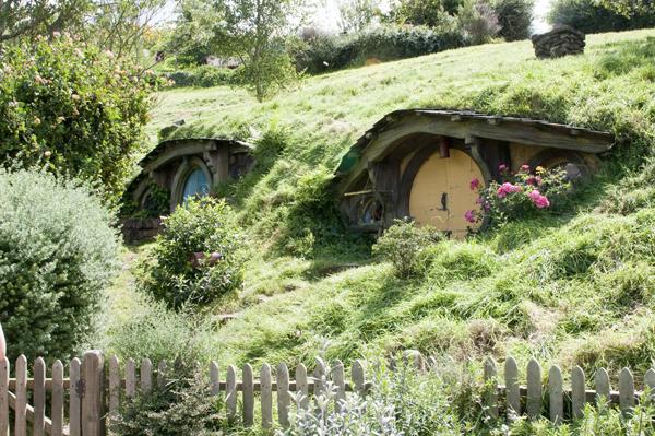 New-Zealand-Hobbiton-by-Ashley-Lynn-Photography (13)