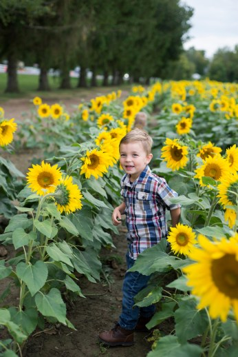 Family-Session-Sunflower-Field-by-Ashley-Lynn-Photography-1004