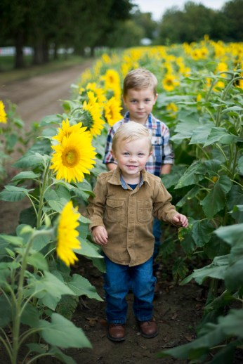 Family-Session-Sunflower-Field-by-Ashley-Lynn-Photography-1006