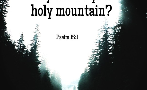 Dwelling on the Holy Mountain: My journey thorough Psalms (15)