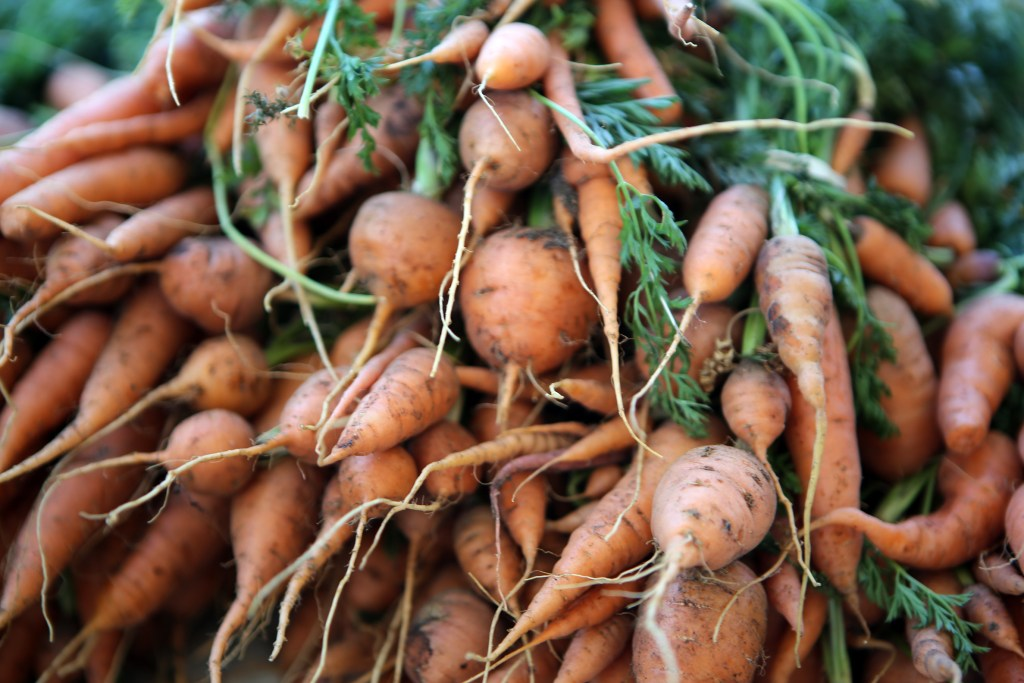 farmers-market-by-shelley-dedauw