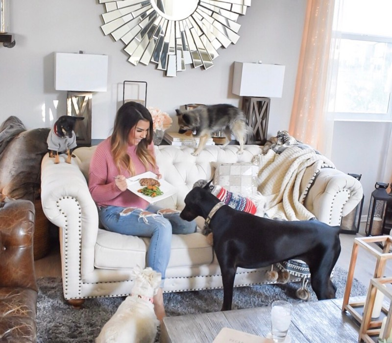 Ashley Nicole Interiors Dogs and Design Living Room