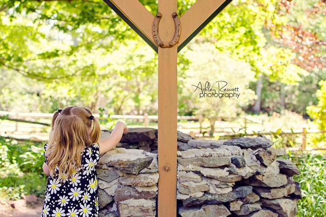 © 2015 Ashley Rescott Photography, LLC, all rights reserved.