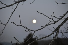 The moon added to the dramatic atmosphere