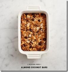 Almond Coconut Bars!