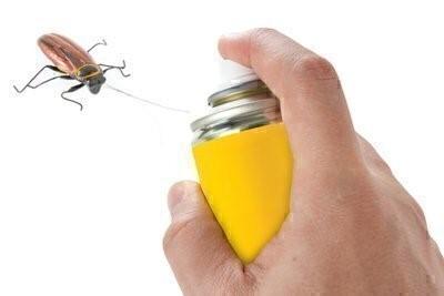 pest control safety precautions
