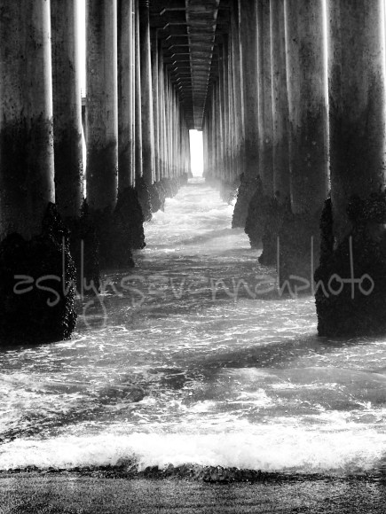 under the pier b&w-wm