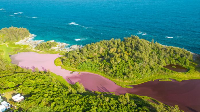 Spittal Pond also shows off an intense pink body of water